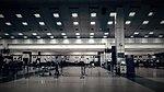 TRV Airport Check ins.jpg