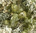 Talc-Vesuvianite-usa54c.jpg