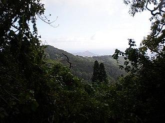 Tantalus-Round Top Road - Image: Tantalus Dr Diamond Head view
