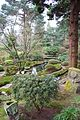 Tatton Park 2015 13 - Japanese garden.jpg