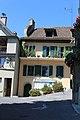 Terrasses de Lavaux - panoramio (10).jpg