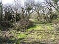 The Cabin - geograph.org.uk - 367389.jpg