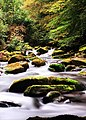 The East Lyn River, Lynmouth, North Devon - panoramio.jpg
