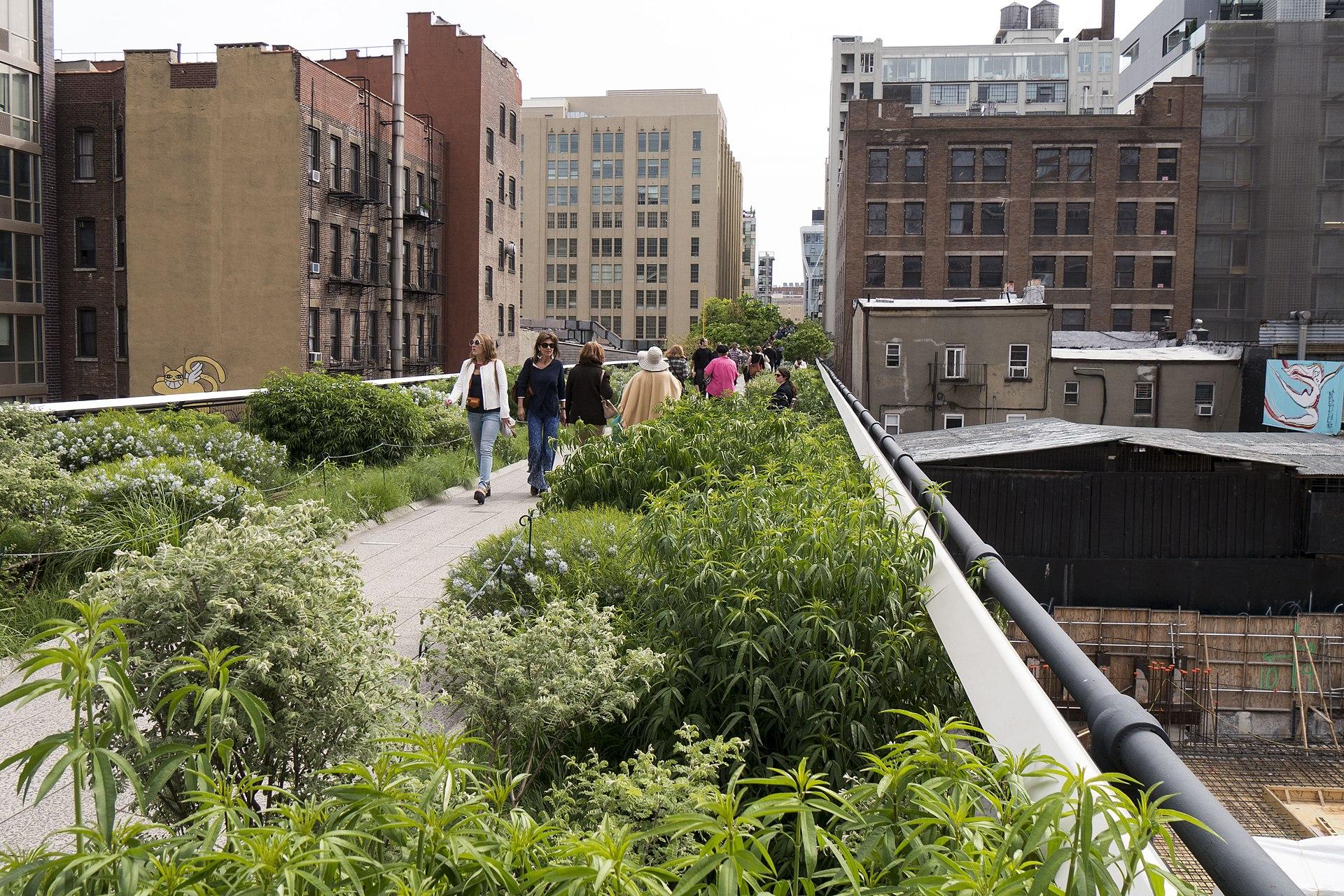 10 Best Outdoor Activities in New York City, high line new york