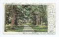 The Old Manse, Concord, Mass (NYPL b12647398-62052).tiff