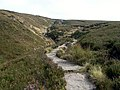 The Pennine Way - geograph.org.uk - 551012.jpg