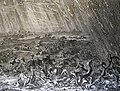 The Phillip Medhurst Picture Torah 337. The plague of hail and fire. Exodus cap 9 v 22. Luyken and son.jpg