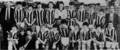 The Seir Kieran panel who won the Offaly U-16 Hurling Title of 1983.png
