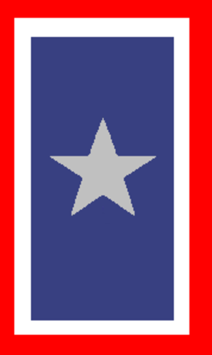 Service flag - The Silver Star Service Banner