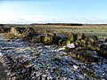 The Waterhouse Farm ruins, Kennox Moss, East Ayrshire - view south-west from the Gallowayford Road.jpg