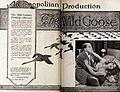 The Wild Goose (1921) - 2.jpg