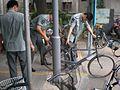 The bike cull (2863210451).jpg