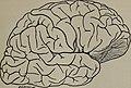 The journal of mental pathology (1901) (14804493543).jpg