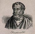 Theophrastus. Line engraving. Wellcome V0005785.jpg