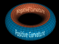 Torus Positive and negative curvature.png