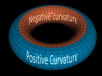 Gaussian curvature - Some points on the torus have positive, some have negative, and some have zero Gaussian curvature.