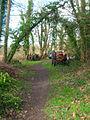 Tractor's Graveyard - geograph.org.uk - 323298.jpg