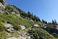 Trail Argentière - Lac des Cheserys 2.jpg