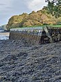 Tremayne Quay on the south bank of the Helford River.jpg