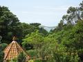 Tresco Abbey Garden - distant view.png