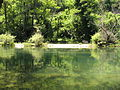 Treska River.jpg