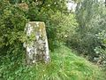 Triangulation pillar, Thornhill - geograph.org.uk - 1002278.jpg