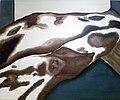 Tricot 2012 - Cowhide.jpg