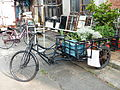 Tricycle Loaded Bonsai in Lane 394, Fuyuan Street 20140103.JPG