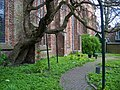 Tuin binnen - Grote of Sint-Martinuskerk - Dokkum.jpg