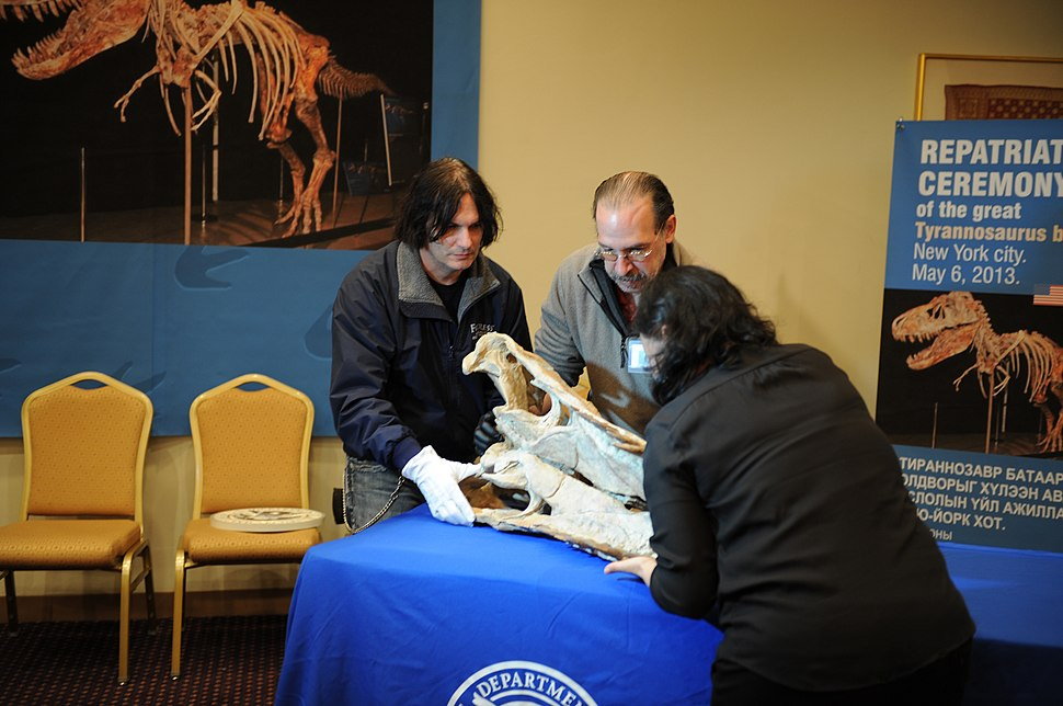 U.S. Immigration and Customs Enforcement (ICE) officials return a Tarbosaurus bataar skeleton to the government of Mongolia during a repatriation ceremony May 6, 2013, at a Manhattan hotel in New York 130506-H-ZZ999-007