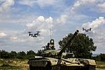 U.S. Marines train alongside partner nations to strengthen integration (Image 1 of 12) 160511-M-PJ201-879.jpg