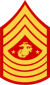 three chevrons up and four down with Eagle, Globe, and Anchor insignia flanked by two stars