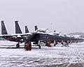 US Air Force 090120-F-6561S-001 F-15E's snowed in.jpg