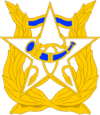 US Army Band DUI.PNG