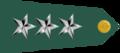 US Army O9 shoulderboard-horizontal.png