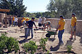 US Navy 080913-N-3271W-055 The Chief's Mess of Navy Recruiting District Phoenix participates in a landscape service project.jpg