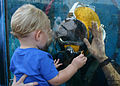 US Navy 101002-N-5191L-103 A toddler taps the glass of the Navy diver's demonstration chamber at the 2010 Miramar Air Show.jpg