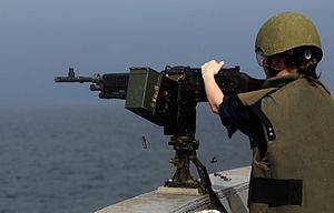 US Navy 111212-N-CT127-078 A Sailor participates in a live-fire training exercise.jpg