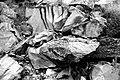 UTAH - Along Burr Trail (10-14-11) (8) (11118051703).jpg
