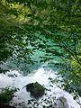 Ulivanje reke Vrelo u reku Drinu, Perućac.jpg
