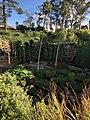 Umpherston sink hole garden.jpg