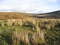 Upland countryside - geograph.org.uk - 294294.jpg
