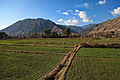 Valley in Kunar-2012.jpg