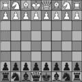 Varianti-scacchi-wild-6.png