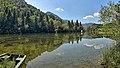 Vaufrey, le Doubs en amont du barrage.jpg
