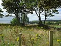 View from Inver campsite - geograph.org.uk - 543206.jpg