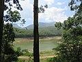 Views around Munnar, Kerala (61).jpg
