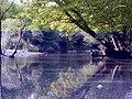Vikos river at Aristi and Papingo, Ioannina, Epirus, Greece.jpg