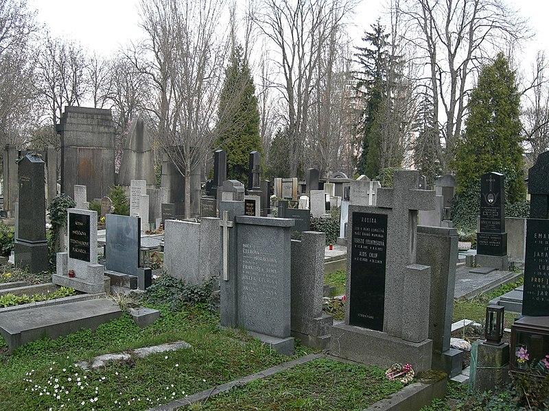 File:Vinohradský hřbitov (2).jpg