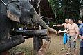 Visiting Thailand DVIDS206986.jpg